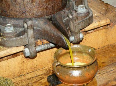 Olejarnia Zagłoby – lokalnie, smacznie i zdrowo